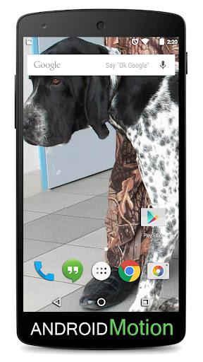 玩個人化App|Bracco Background免費|APP試玩