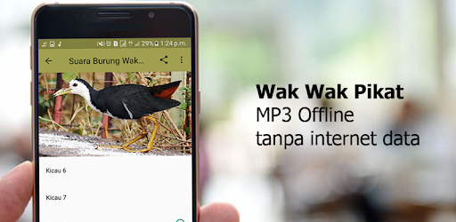 Wak Wak Pikat MP3 for PC