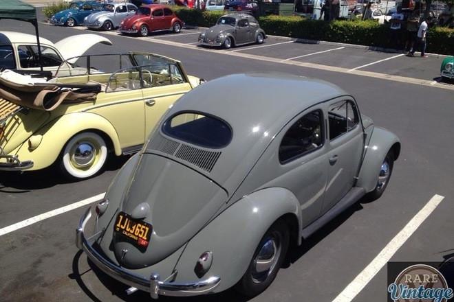1954 vw standard Hire CA