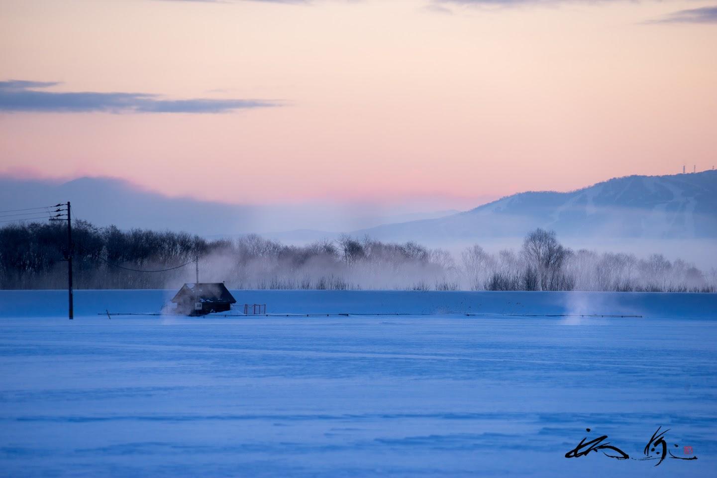 朝霧に包まれながら、ほんのりピンク