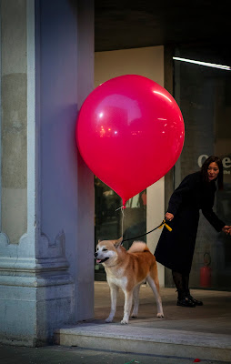 il cane e il suo palloncino di Giovi18