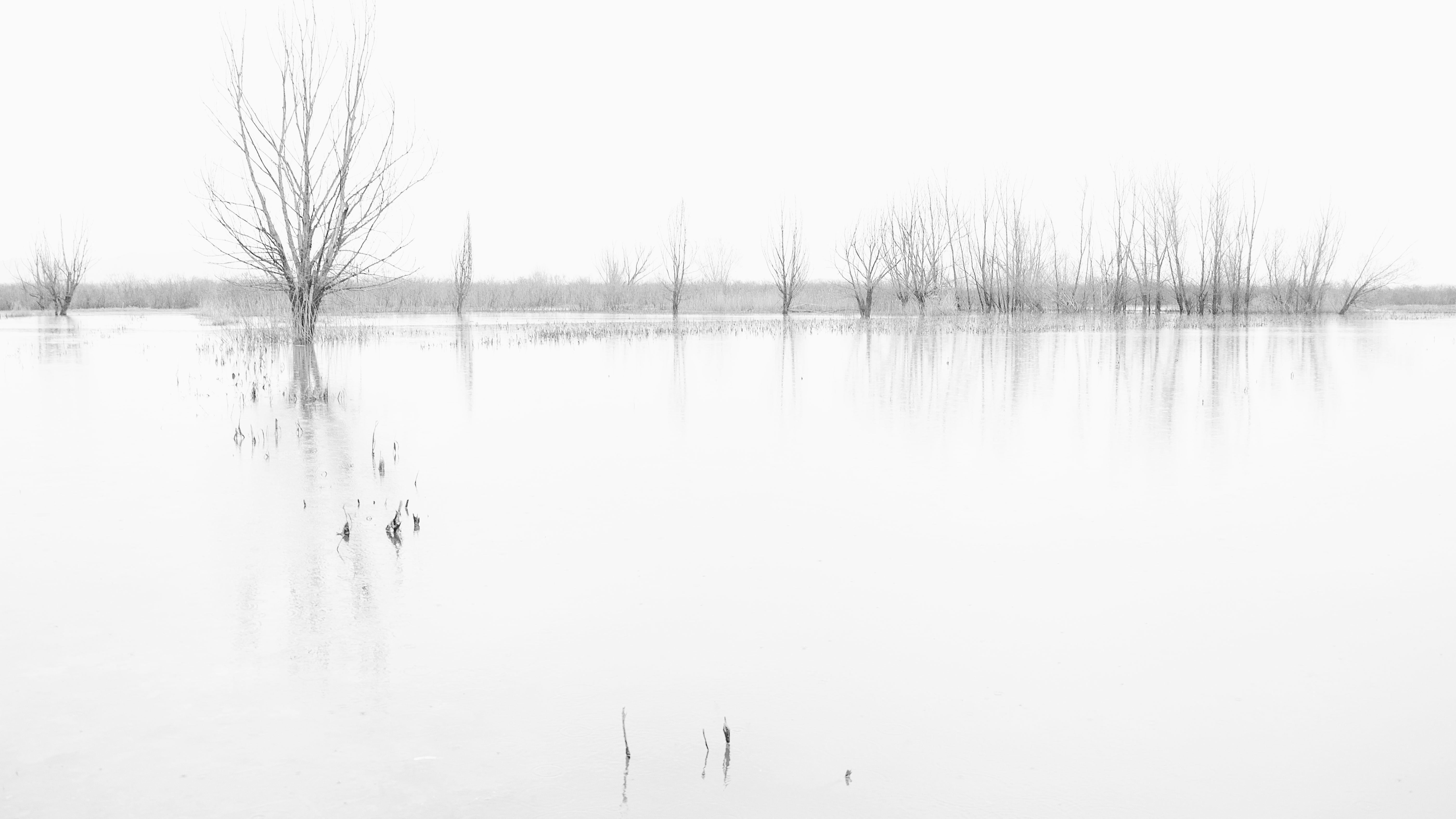 Paesaggio minimale. di effeenne