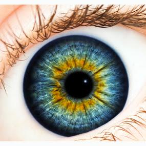Eye see by Tomáš Celar - People Body Parts ( eye )