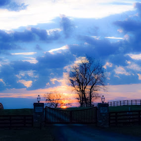 Kentucky Mornings. by Jim Dawson - Novices Only Landscapes