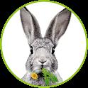 Dein Kaninchen Kräuterguide icon