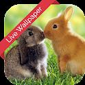 Bunny Cube 3d Live Wallpaper icon
