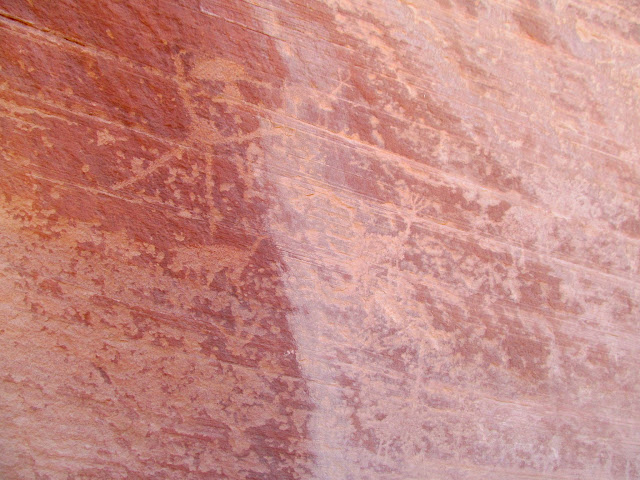 Deer petroglyphs