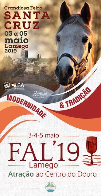 Cavalos e mundo agrícola juntos num grande evento em Lamego