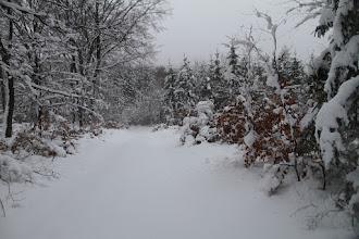 Photo: Tu už je nádherná zima s prachovým snehom, kvôli tomu sa sem oplatilo prísť