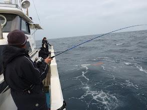 """Photo: """"オオイシさん""""もヒーット!・・・でしたが、 サメに食われてしまいました!"""