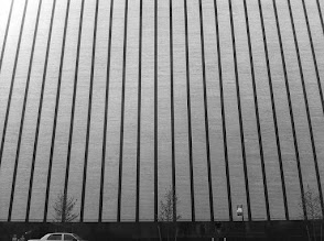Photo: Stripes