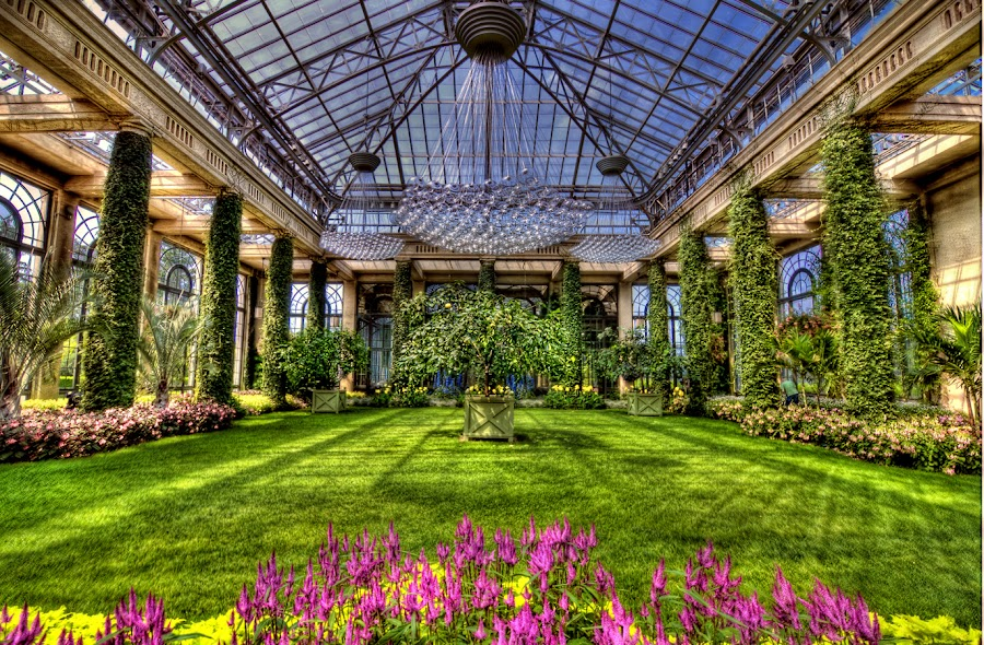 Longwood Gardens Conservatory by Nino Ignacio - Buildings & Architecture Other Interior ( interior, pennsylvania, travel, flowers, garden )