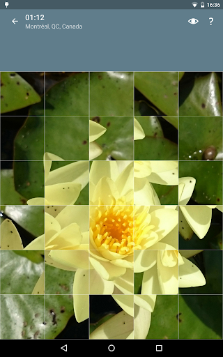 Jigsaw Puzzle: Flowers screenshot 21