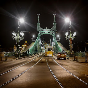 Liberty bridge - Budapest by Estislav Ploshtakov - Buildings & Architecture Bridges & Suspended Structures (  )