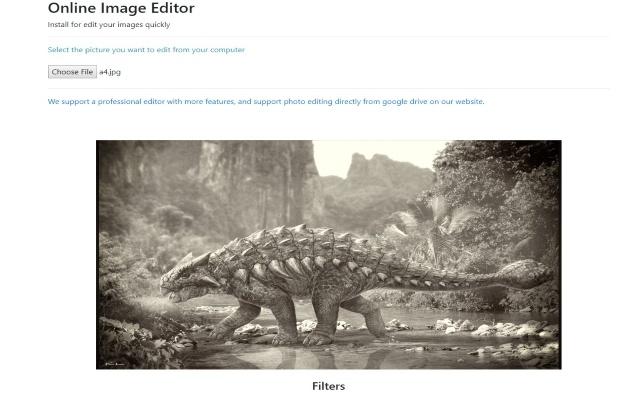 Image Editor for Google Chrome™
