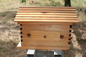 Photo: Flow hive beekeeping review MahakoBees