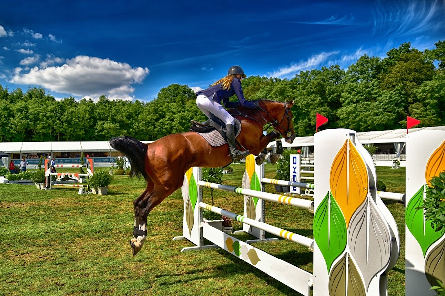 Lady's Jump by Marco Bertamé - Sports & Fitness Other Sports ( clouds, jumping, green, 2016, horse, yellow, roeser, luxembourg, jump, sky, blue, woman, réiser päerdsdeeg, equestrian event, lady, csi jumping, brown, obstable,  )