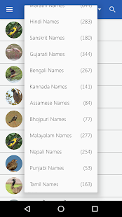 Indian Birds- screenshot thumbnail
