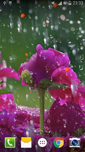 Rose Raindrop Live Wallpaper  screenshots 4