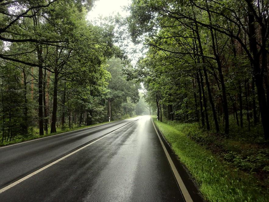 мокра дорога