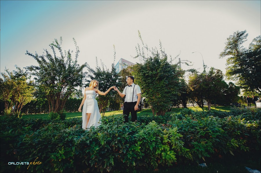Wedding photographer Sasha Orlovec (sasharay). Photo of 09.04.2017