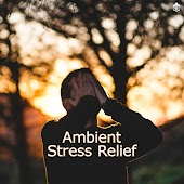Ambient Stress Relief