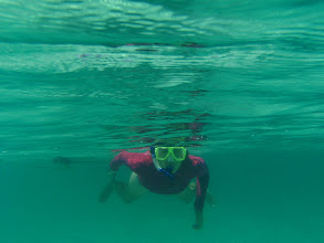 Photo: Snorkeling off Hoffman Cay
