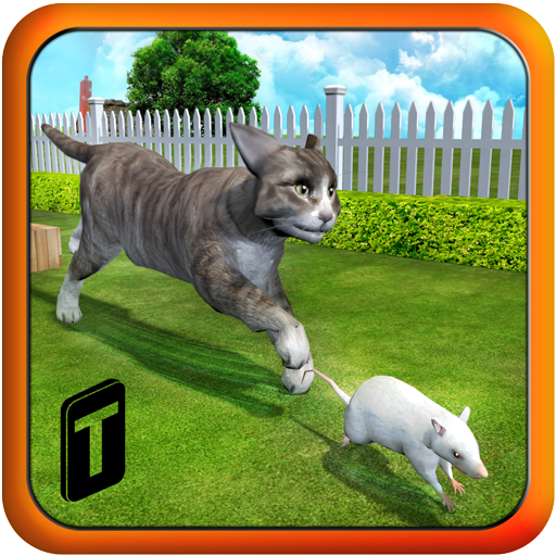 Crazy Cat vs. Mouse 3D (game)