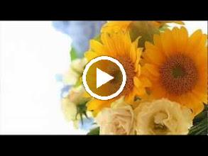 Video: A. Vivaldi  Op. 1 n. 1 - Trio sonata for 2 violins   b.c. in G minor (RV 73) -