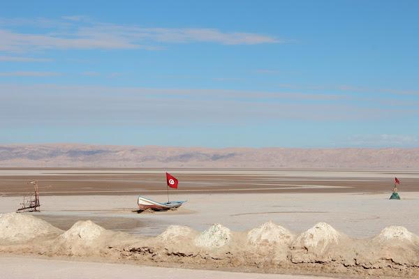Barca nel deserto di ViVa