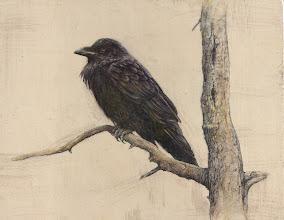 "Photo: ""Raven"" ©2011 LMcNee 16x20 mixed media"