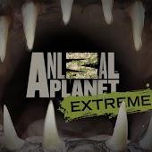 Animal Planet Extreme