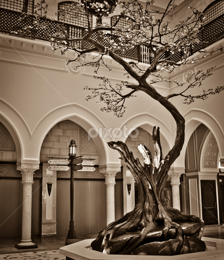by Rodolfo Alar - Nature Up Close Trees & Bushes