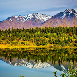 Fall in Alaska by Rafi SM - Landscapes Mountains & Hills ( national park, reflection, blue sky, mountain, fall colors, nature, greenery, alaska, fall, forest )