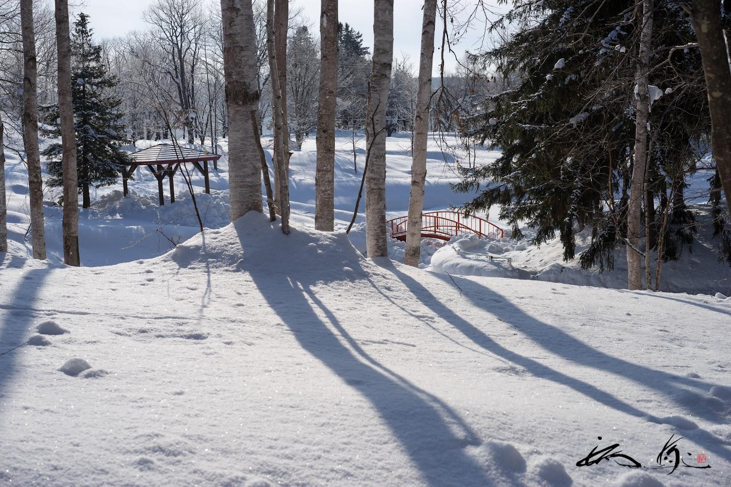 金比羅公園の冬景色