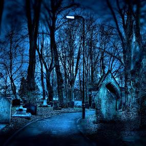 RIP by Carlos Acuesta - Landscapes Travel