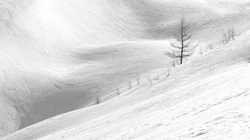 linee di Mauro Moroni