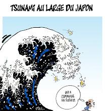 Photo: 2011_Tsunami au Japon