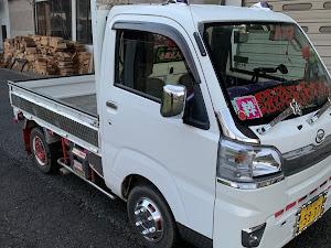 ハイゼットトラック s500のカスタム事例画像 おデブさんの2020年06月16日22:11の投稿