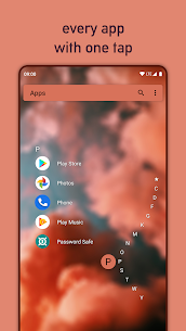Niagara Launcher fresh & clean 2