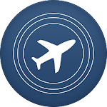 Online Flight Check-In Icon