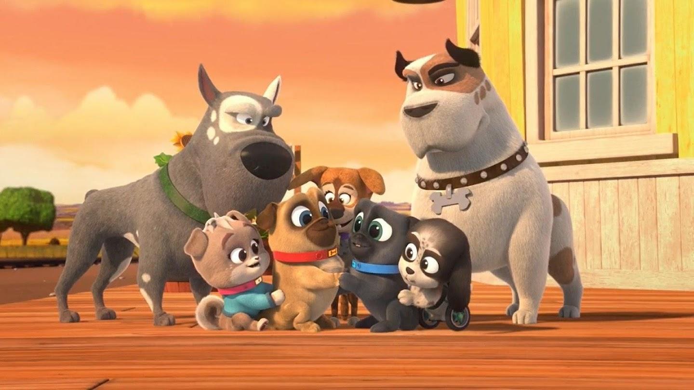 Watch Puppy Dog Pals live