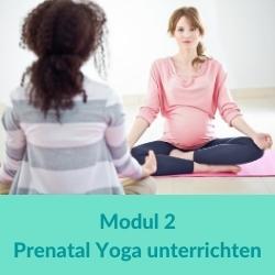 Prenatal Yoga Modul 2