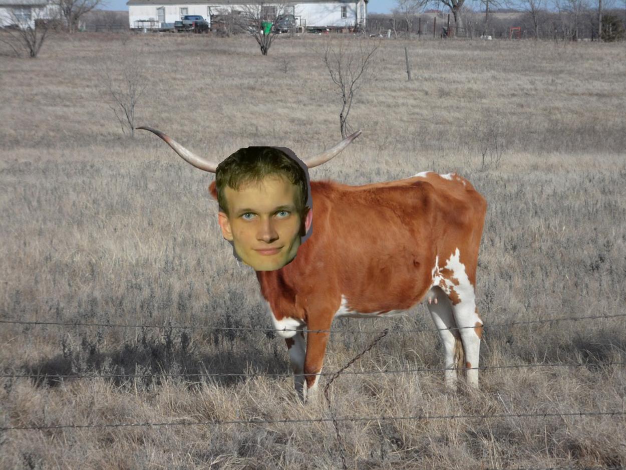 BeefChain cattle Vitalik Buterin