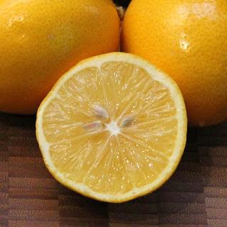Meyer Lemon Salad.