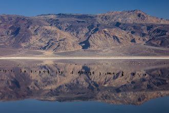 Photo: Water in the desert