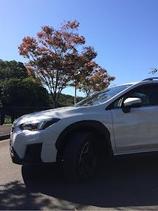 XV GT7 のカスタム事例画像 X'vehicleさんの2018年10月22日07:31の投稿