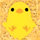 TamagoChick Download for PC Windows 10/8/7