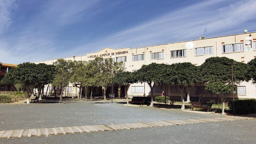 La Universidad de Almería: claro referente en educación superior agroalimentaria