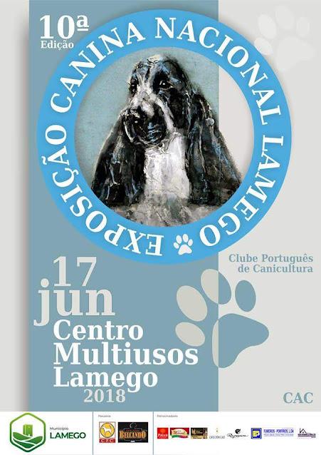 """Exposição Canina de Lamego vai eleger o """"Campeão Nacional de Beleza"""""""